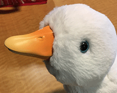 opens large image of stuffed toy duck that can bring children cheer